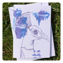 peacock card - purple by chris cowdrill