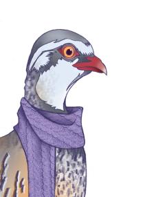partridge (digital) by chris cowdrill